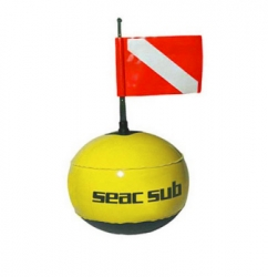 d seac round buy fluo with line  large